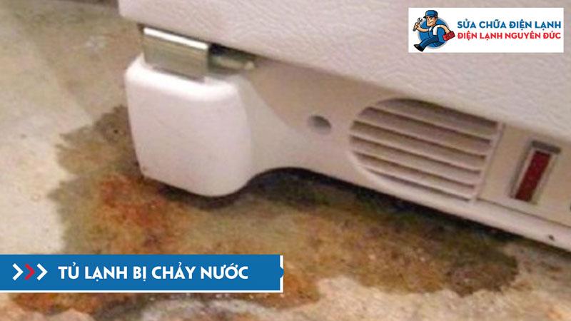 chay-nuoc-duoi-tu-dienlanhnguyenduc