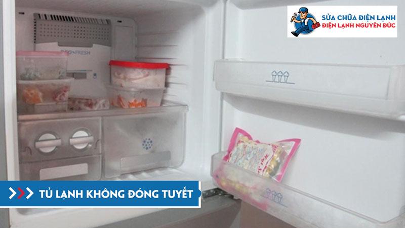 tu-lanh-khong-dong-tuyet-dienlanhnguyenduc